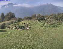 Webcam CIMBERGO