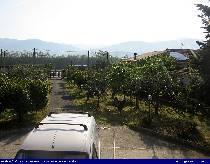 Webcam RENDE