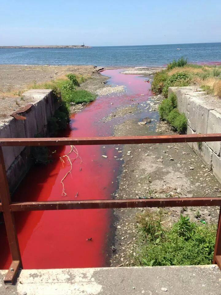 Inquinamento dal fiume