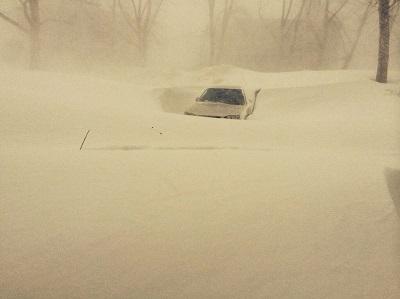 Immagini della bufera di neve nella russia orientale del - Immagini del cardellino orientale ...