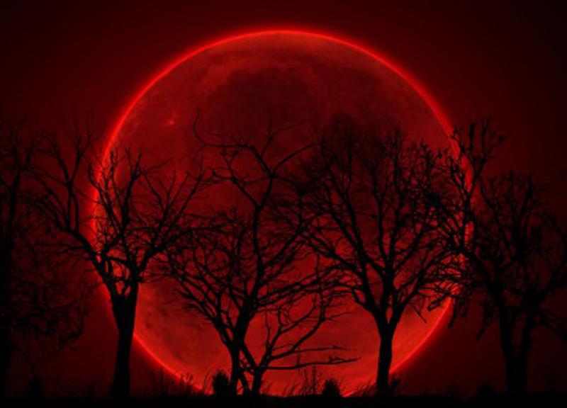 Luna Rossa in arrivo l'8 Ottobre