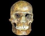 Scoperta una antica popolazione umana ancora sconosciuta alla scienza