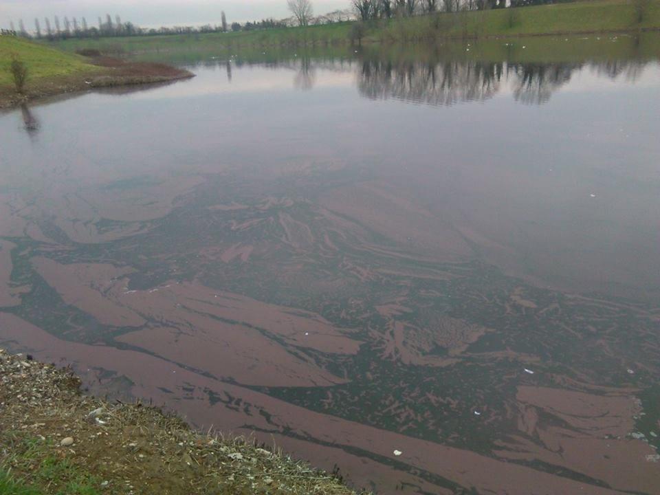 Lago si colora di rosso a Brugherio