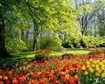 Torna la primavera sull'Italia temperature ancora in aumento con punte oltre +20°C