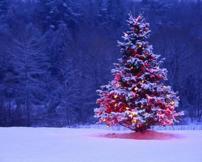 Ci Sara La Neve A Natale? [1996]