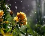 Meteo prossimi giorni ancora piogge sparse e clima fresco per il finale del mese