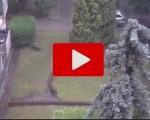 Nubifragio a Milano: danni in tutta la città