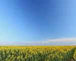 Meteo weekend: espansione dell'anticiclone africano per fine luglio con tempo stabile, soleggiato e caldo sull'Italia