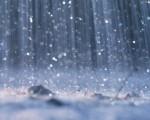 Petricor che cos'è e a cosa è dovuto il tipico profumo della pioggia