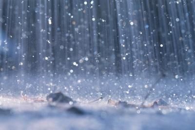 Petricor: che cos'è e a cosa è dovuto il tipico profumo della pioggia