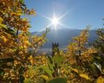 Meteo Italia: il rinforzo dell'anticiclone porterà giornate soleggiate e miti, residue piogge e temporali al Sud.