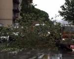 Temporali e grandine in Sicilia anche Palermo non è stata risparmiata dal maltempo