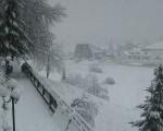 Neve Alpi nevicate anche abbondanti fino a quote medie sui settori orientali