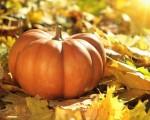 Meteo Novembre: come potrebbe essere il tempo sull'Italia per Halloween e Ognissanti?