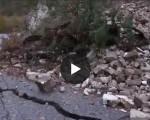 terremoto 20 centimetri