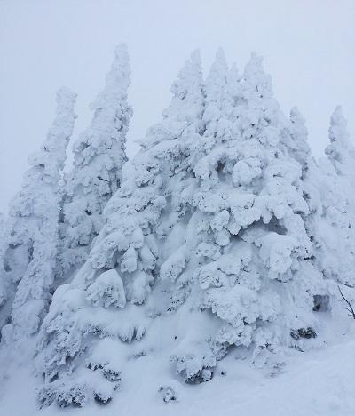 METEO | Weekend di FORTE MALTEMPO con NUBIFRAGI. Neve fino a 1000m
