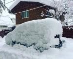 A Krasnaya Polyana, zona caucasica, la neve ha sommerso ogni cosa - Severe Weather World