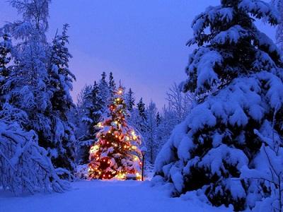 Immagini Natale Neve.Meteo Natale 2016 Vediamo Se Freddo E Neve Arriveranno Per