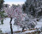 meteo-marzo-freddo-e-neve-sullitalia-con-linizio-del-nuovo-mese-vediamo-cosa-linverno-potrebbe-ancora-riservarci