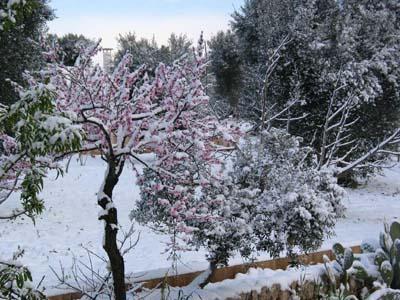 Inizio di primavera con occasioni di freddo e neve sull'Italia? - ceglieweb.it
