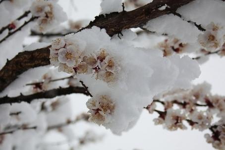 METEO PRIMAVERA: mese di Marzo che potrebbe essere dinamico sull'Italia, fresco e piovoso soprattutto al Centro-Nord - zmphoto.it