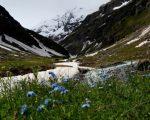 Tendenza meteo sulla primavera in Italia clima sempre più mite ma non possono escludersi ritorni del freddo.