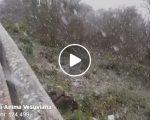 Neve sul Vesuvio ad aprile: il video della meravigliosa imbiancata