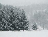 NEVE ancora inverno su Alpi e Appennini con nevicate anche abbondanti