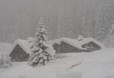 NEVE ALPI: nevicate anche copiose riportano l'inverno fino a quote medie