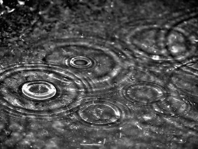 PETRICOR: il profumo della pioggia ha un nome proprio