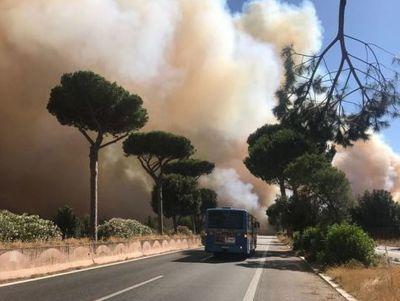 Roma, fermato piromane: potrebbe essere responsabile rogo Castel Fusano