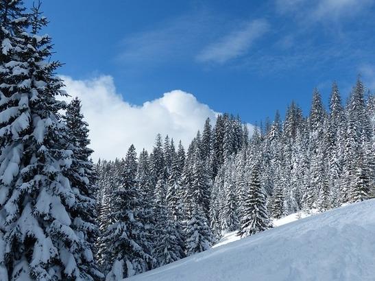Proiezioni sull'evoluzione meteo dell'inverno 2017/2018 con le ultime uscite dei modelli climatici - pixabay.com