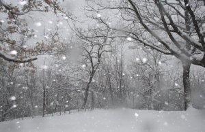 Neve in arrivo: le colline di molte regioni sono pronte a tingersi di bianco nelle prossime ore. Zone colpite e a maggior rischio