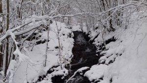 Piogge e nevicate fino a quote molto basse sull' Italia - foto Francesco Pardini
