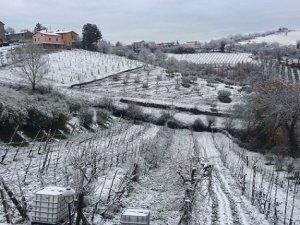 Torna la neve in Umbria e Toscana, risveglio bianco stamani a Perugia e altre città collinari