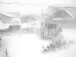 blizzard neve
