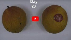 Frutta fresca per due settimane in più