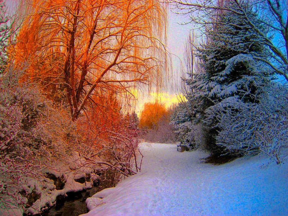 Colpo di coda dell'inverno per il finale di marzo: possibile ritorno di freddo e neve sull'Italia. Fonte: pexels.com