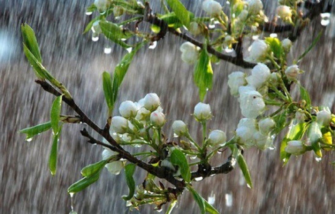 Altre piogge in arrivo in Italia per le prossime settimane di Primavera. Foto Leonardo.it