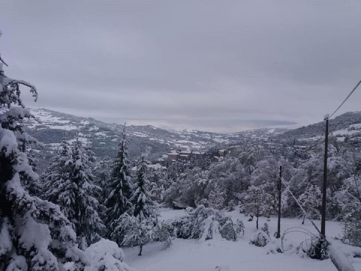 30-35 centimetri di neve caduta nelle ultime ore fino a bassa quota in Emilia Romagna. Foto Eliana Fratti
