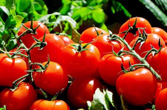 colesterolo pomodori
