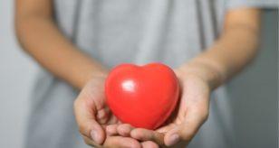Il cuore femminile è più esposto alle malattie cardiache e cardiovascolari
