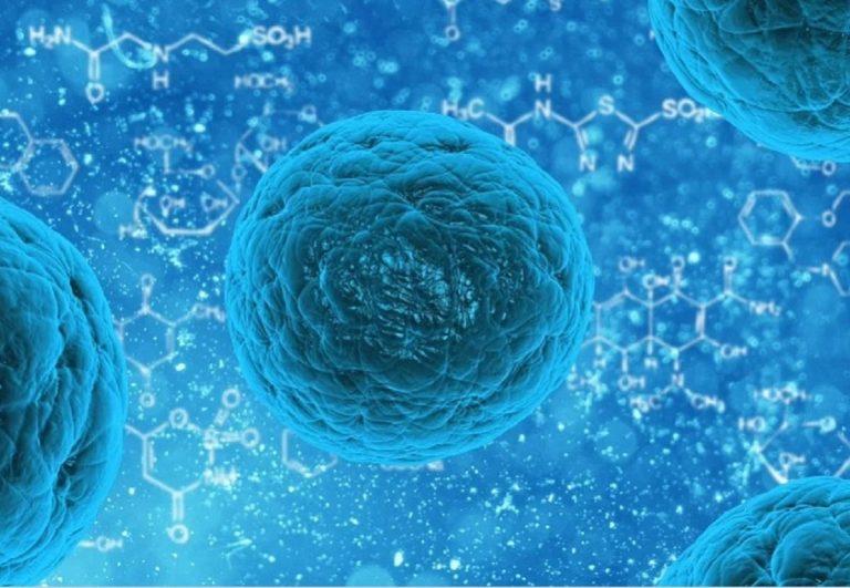 Pertosse, comunità scientifica in allarme: il batterio si sta evolvendo in un superbug che elude il vaccino