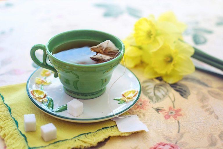 Bere tè verde fa bene al cuore e allunga la vita: ecco perché e tutti i suoi effetti