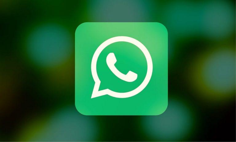 WhatsApp, in arrivo le nuove Emoji tra animali estinti e simboli transgender