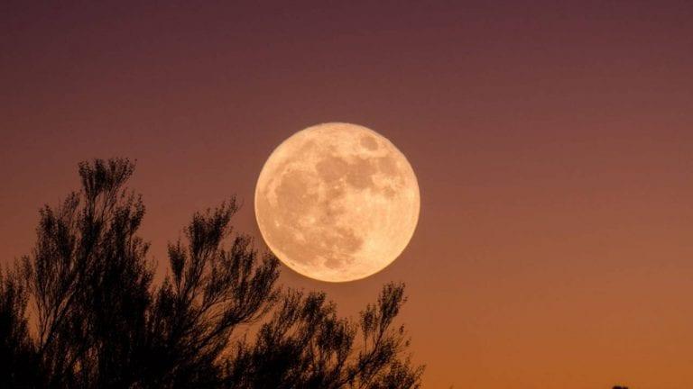 Superluna dei fiori, ecco quando ammirare la Luna più grande in assoluto
