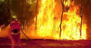 Incendio e crollo nel sud Italia, terribile tragedia tra le fiamme. Ecco cos'è successo - Foto di repertorio Ansa